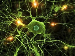 scleroza multipla tratament