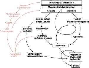 socul cardiogen in infarct miocardic acut